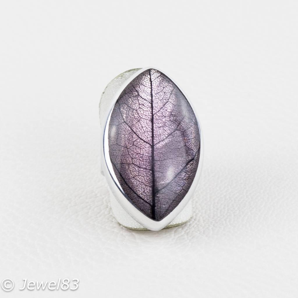 Culture mix leaf purple ring